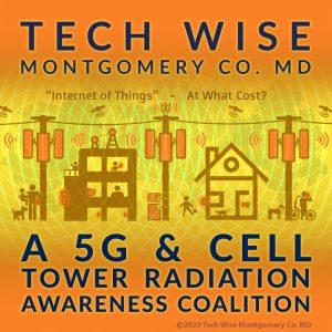 Tech Wise MoCo MD Logo